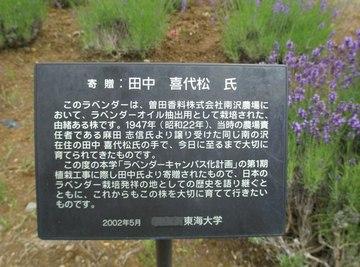 曽田香料が栽培開始